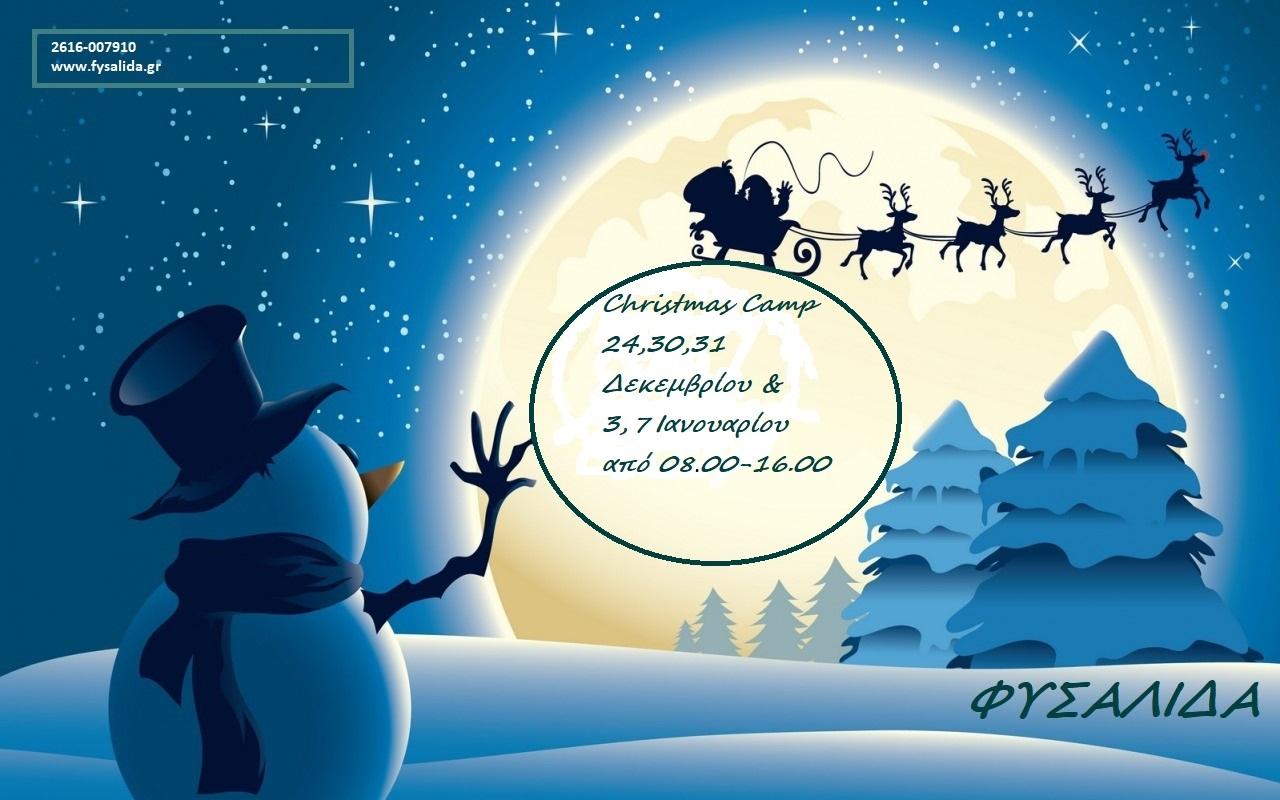 Fusalisa.christmas-reindeer